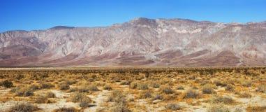 加利福尼亚州的沙漠 免版税库存图片