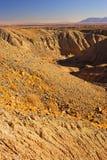 加利福尼亚州的沙漠 库存照片