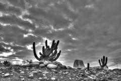 加利福尼亚沙漠 库存图片