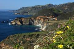 加利福尼亚海岸线 免版税图库摄影