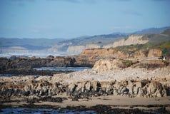 加利福尼亚海岸 图库摄影
