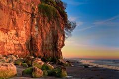 加利福尼亚海滩 免版税库存图片