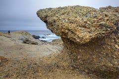 加利福尼亚灰狼点岩石 免版税库存照片