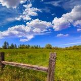 加利福尼亚草甸大农场在一个蓝天春日 免版税库存照片