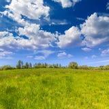 加利福尼亚草甸大农场在一个蓝天春日 免版税库存图片