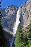加利福尼亚,美利坚合众国,美国 免版税库存图片