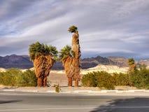 加利福尼亚死亡国家公园谷 库存图片