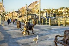 加利福尼亚2016年10月4日:Oacific海洋fromRedondo海滩码头看法  库存图片