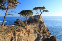 加利福尼亚 免版税库存照片