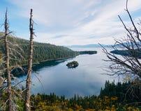 加利福尼亚Tahoe湖 鲜绿色海湾国家公园 库存图片