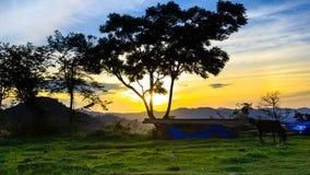 加利- huyen村庄旅游业西疆- QUANG NAM -越南 免版税库存图片