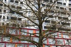 加力骚曲修建鹿特丹的Achitectural 免版税图库摄影