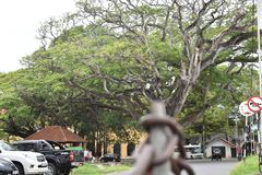 加勒堡垒地区在斯里兰卡 库存图片