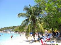 加勒比乐趣 库存照片