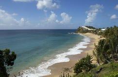 加勒比人。安提瓜岛。 免版税库存图片