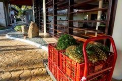 加勒比岛生活菠萝推车和香料在早晨太阳 免版税库存照片