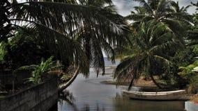 加勒比岛的天堂 免版税图库摄影