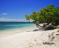 加勒比岛 库存照片