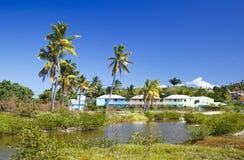 加勒比度假胜地,安提瓜岛 库存照片
