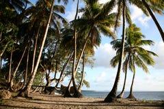 加勒比横向 图库摄影