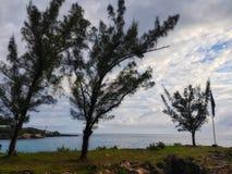 加勒比海和美丽的海滩在牙买加 图库摄影