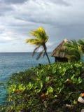 加勒比海和美丽的海滩在牙买加 免版税图库摄影