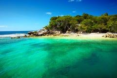 加勒比海滩和热带海在海地 库存照片