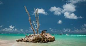 加勒比海滩在蓬塔Cana,多米尼加共和国 库存图片