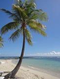 加勒比海滩风景 免版税库存照片