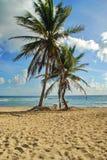 加勒比海滩,圣克鲁瓦, USVI 免版税库存照片