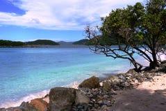 加勒比海滩 图库摄影