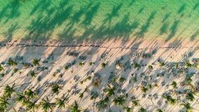 加勒比热带海滩空中录影镜头与棕榈树和白色沙子的 旅行和假期在蓬塔卡纳,多米尼加Repu 股票录像
