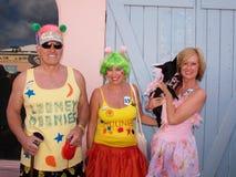 加勒比狗游行 免版税库存图片