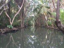 加勒比的海盗的多米尼加水的集合 库存图片