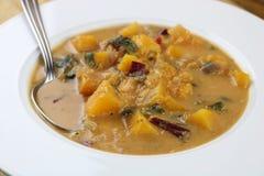 加勒比蔬菜汤 免版税库存图片