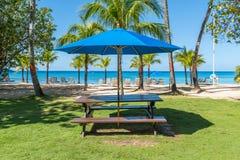 加勒比野餐 免版税库存照片