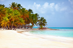 加勒比,绍纳岛,多米尼加共和国美丽的热带海岸  免版税库存照片