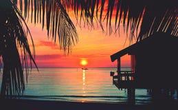 加勒比画象 免版税库存照片