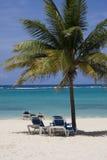加勒比 库存图片