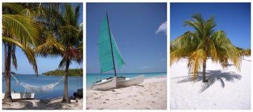 加勒比 免版税图库摄影