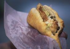 加勒比foo :鲨鱼和烘烤 免版税库存图片