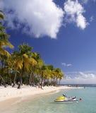 加勒比watersports 图库摄影