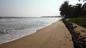 加勒,斯里兰卡- 2019-04-01 -在狭窄的树的海浪流程排行了海滩 股票视频