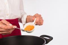 烹调用咖喱 库存图片