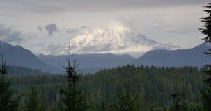 更加多雨朦胧的大气条件国家的森林Mt 免版税库存照片