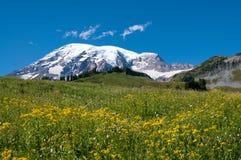 更加多雨的山,天堂谷,草甸 免版税库存照片