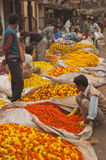 加尔各答花市场 库存图片