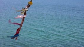 贝加尔湖湖 贝加尔湖海岛湖olkhon俄国 与丝带的树 股票录像