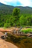 贝加尔湖的山河 免版税图库摄影