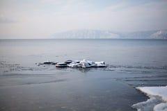 贝加尔湖的本质 免版税库存图片